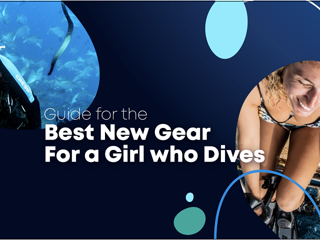 Best New Gear for a Girl who Dives