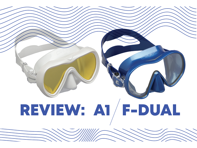 Mask Review: A1 and F-Dual