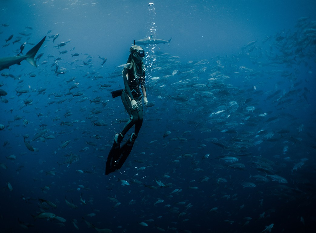 freediving techniques, freedive, freediving equipment, dive, diver, scuba diver, freediving fins